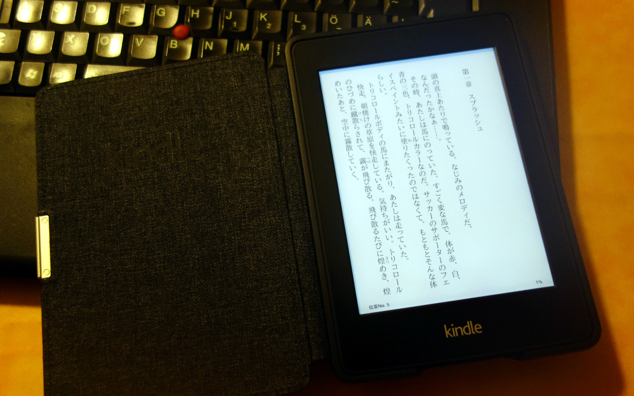 hardwarerelated:20131226_1910_kindle_paperwhite_vertical_japanese_aozora_small.jpg